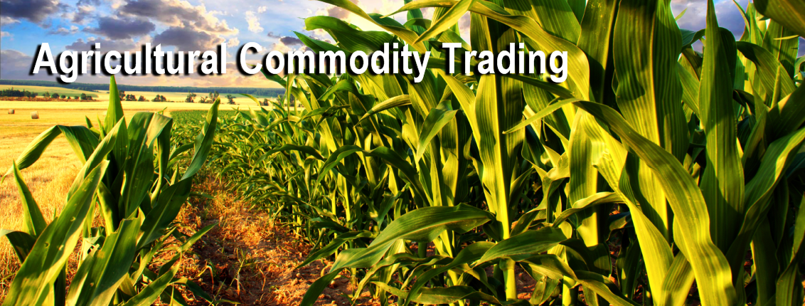 Corn & Agricultural ETF Trading Newsletter